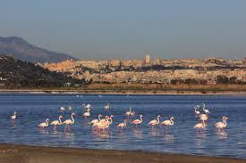 Casteddu, Sardiniens huvudstad